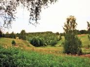 Коттеджный поселок Малеевские просторы